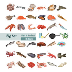 Hand Drawn Colorful Seafood Set
