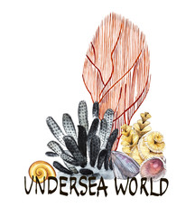 Word-Undersea world. Compositions Seaweed sea life and corals object isolated on white background. Watercolor hand drawn painted illustration. Underwater watercolor background illustration.