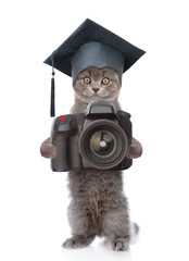 Cat photographer with black graduation hat taking pictures. isolated on white background