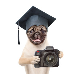 Dog photographer with black graduation hat taking pictures. isolated on white background