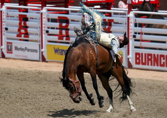 Clark of Wellfleet, Nebraska rides the horse Second Typhoon in the novice saddle bronc event during the Calgary Stampede rodeo in Calgary