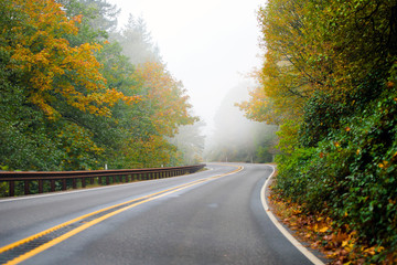 Winding highway autumn road disappearing into the fog