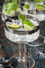 Gin and Tonic with Juniper berries in coupes