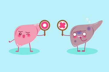 cute cartoon liver