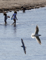 Children bathe in the Mediterranean Sea during a warm and sunny winter day in Marseille