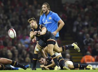 Wales v Italy - Dove Men Test
