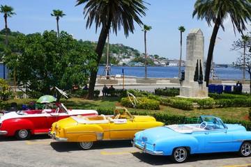 Garden Poster Cars from Cuba Oldtimer auf Kuba