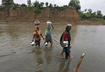 Village women wade through the waters of river Harin to fetch drinking water near Sajjanpura village