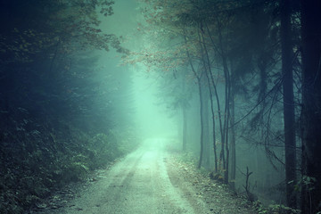 Wall Mural - Fantasy colored foggy forest road. Scary blue green colored countryside woodland.