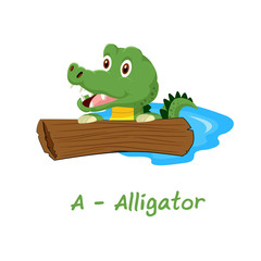 Isolated animal alphabet for the kids, A for Alligator