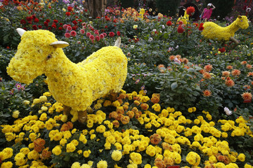 Visitor looks at a floral display of goats made from chrysanthemum blooms ahead of the Lunar New Year at the Gardens by the Bay greenhouse in Singapore