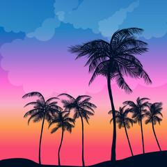 Summer Palm Sunset