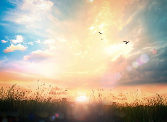 World environment day concept: Abstract meadow sunrise background