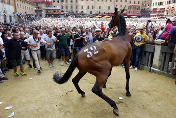 """The horse of the """"Civetta"""" or Owl parish is escorted by its groom and followed by supporters as they leave Del Campo square in Siena"""