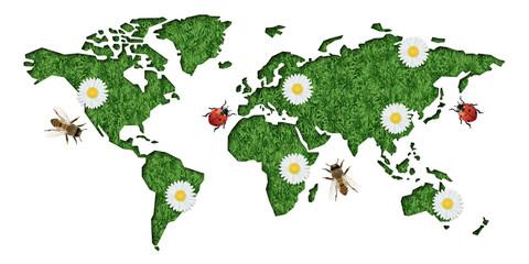 environnement - terre - carte - monde - écologie - développement durable - énergies renouvelables - réchauffement climatique