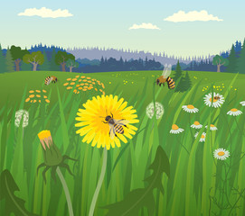 Landscape with bees on the flower meadow