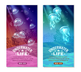 Underwater Colorful Banners Set