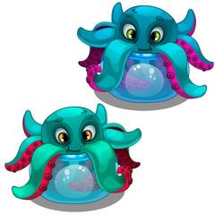 Funny octopus from the aquarium. Sea creature