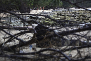 Foreign tourists walk on a small beach with fallen trees and damage still visible from the 2004 tsunami in Khao Lak