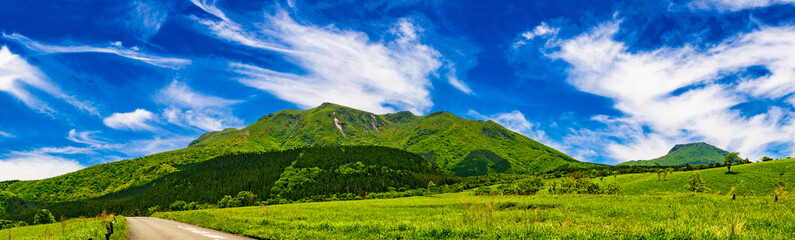 新緑の草原 久住高原