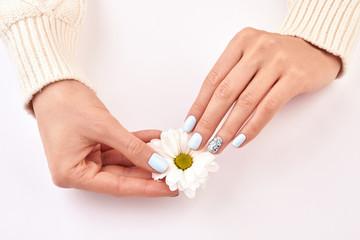 Wall Mural - White chrysanthemum in female hands.