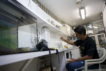 Luis Merlo, a veterinarian, fills glass containers with food for Drosophila melanogaster larvae, that will be used as part of the diet for frogs, at the terrarium facilities in Caracas