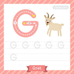 Letter G uppercase tracing practice worksheet with goat for kids learning to write. Vector Illustration.