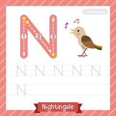 Letter N uppercase tracing practice worksheet with nightingale for kids learning to write. Vector Illustration.