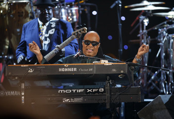 Stevie Wonder plays a medley in tribute to Nelson Mandela during the 45th NAACP Image Awards in Pasadena
