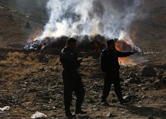Afghan policemen stand near burning narcotics in the outskirts of Kabul
