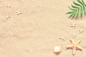 Sea sand with starfish and shells. Top view with copy space