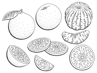 Orange fruit graphic black white isolated sketch illustration vector