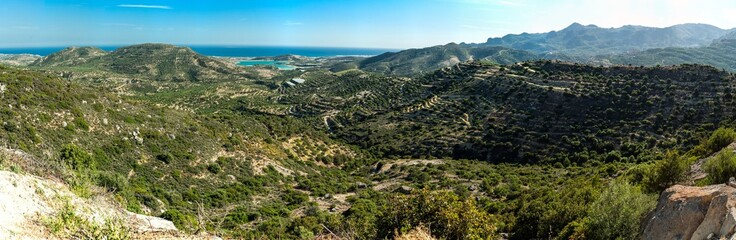 Greece, Crete, olive orchard on the hills with sea in the view