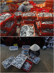 A combination photo shows women sorting fish in Dongfang, China (top) and Ly Son island, Vietnam (Bottom)