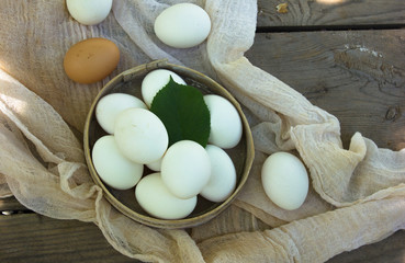 Close up of eggs in sieve, top view of eggs on gauze. Chicken Egg. Hen eggs basket