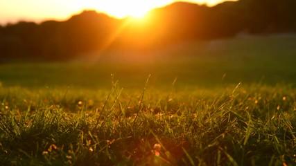 Fotoväggar - Alpine meadow over sunset. Beautiful nature landscape. 4K UHD video 3840X2160