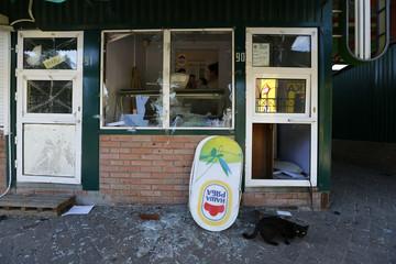 A cat sits outside a shop damaged by shelling in Slaviansk in eastern Ukraine