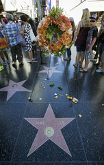 The star of actor James Garner is adorned with flowers on the Walk of Fame in Hollywood, California