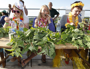 Louise and Lottie Gray, and Ivanova compete in the annual Nettle Eating World Championships during a hen party at Bottle Inn pub in Marshwood