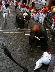 A runner falls in the path of Nunez del Cuvillo bulls during the seventh running of the bulls at the San Fermin festival in Pamplona