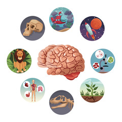 color circular icons with picture world evolution inside around to brain vector illustration