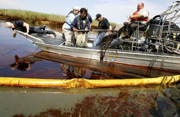 CNN reporter Cooper lays down in the bow of an air boat to take a picture as Governor Jindal safely removes a fishing net from the oil contaminated water in Pass A Loutre