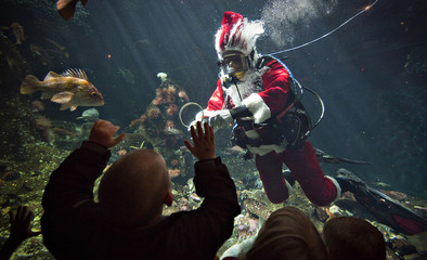 """Young visitors to the Vancouver Aquarium watch """"Scuba Santa"""" swim in the Strait of Georgia display in Vancouver"""