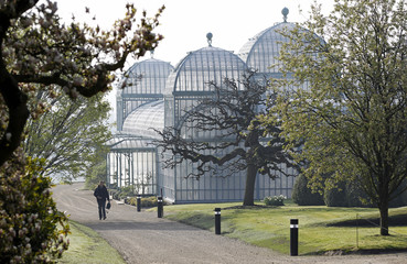 A visitor walks past one of the greenhouses on the grounds of the Belgian royal family's residence of Laeken in Brussels