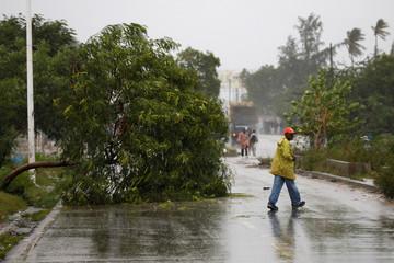 A man walks near a fallen tree while Hurricane Matthew passes through Port-au-Prince, Haiti