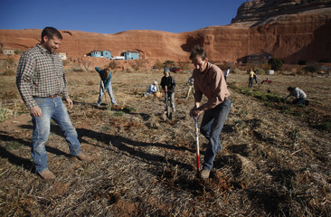 Cary Knecht harvest potatoes with Enoch Foster at the Rockland Ranch community outside Moab