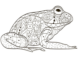 Froggy coloring vector for adults