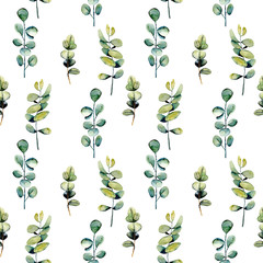 Seamless floral pattern with watercolor eucalyptus branches, hand drawn isolated on a white background