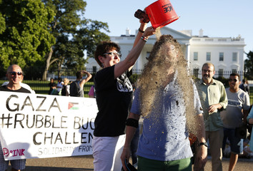 "Bailey pours sand on the head of Beer during the ""Rubble Bucket Challenge"" as they support Palestinians while in the street in front of the White House in Washington"