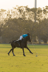 polo player on sunset